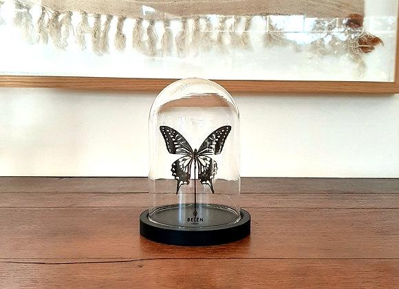 Mini cloche 1 papillon noir et blanc