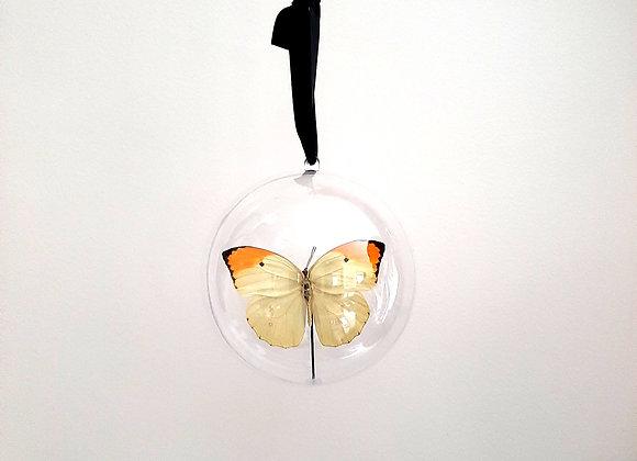 Boule décorative taille 3 papillon jaune et orange
