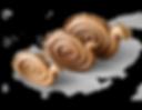 Gaia Ceramics Object