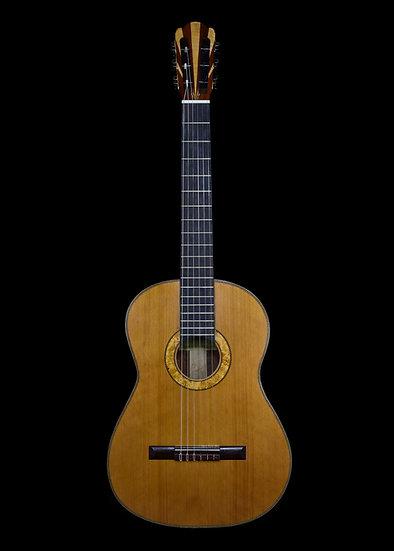 Tim Duyck anniversary guitar
