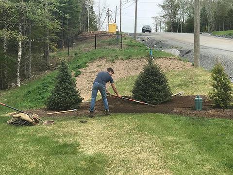 Tree Planting Hammonds Plains.jpg