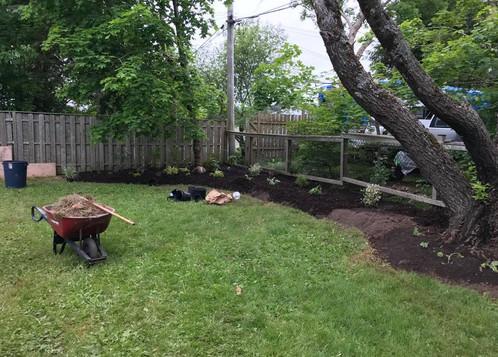 Back Garden Bed 1