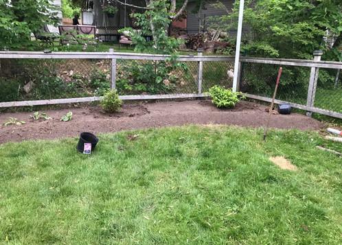 Back Garden Bed 4
