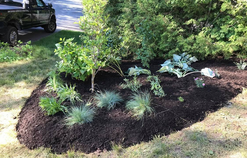 Bed Creation and Planting II