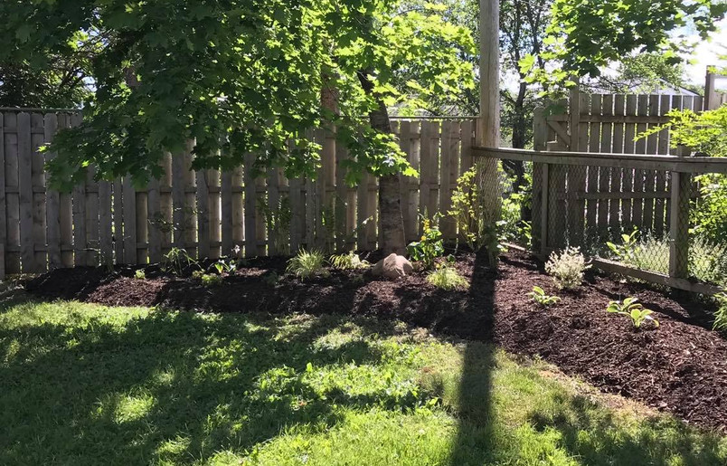 Bed enlargement & planting