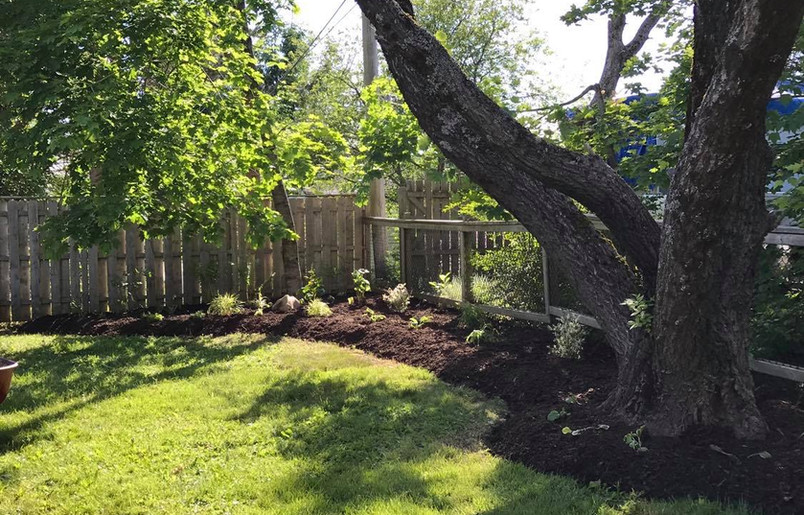 Bed enlargement & planting II