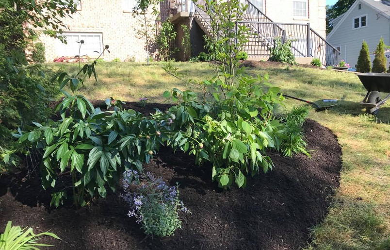 Bed creation & planting
