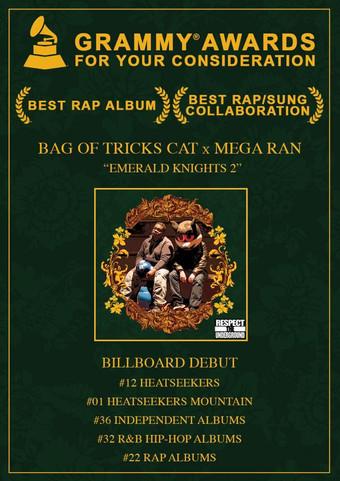 Grammy Awards | Bag of Tricks Cat | Megaran