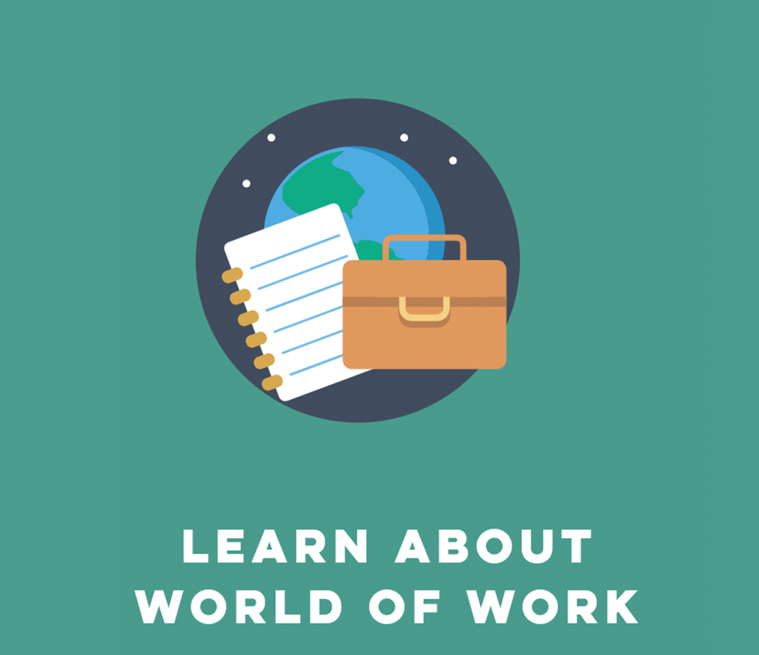 Learn about the world of work