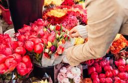 Flowers vs Herbs