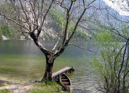 Explore the Danube