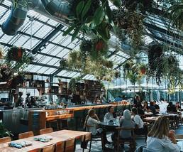 Restaurants and Art I Kajo,