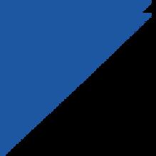 triangolo blu.png