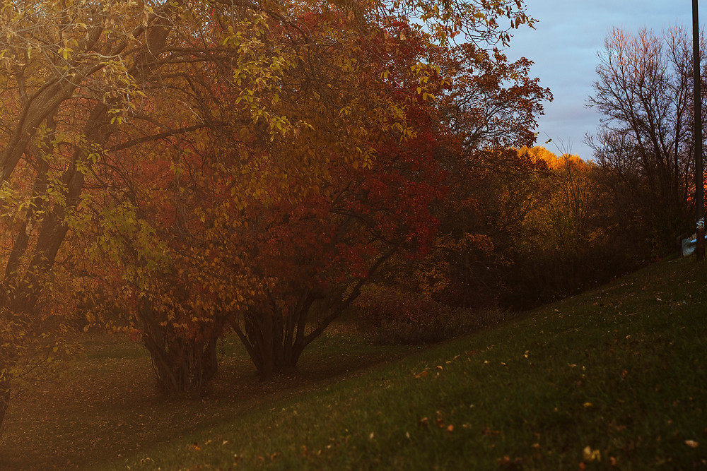 This is fall and I love it
