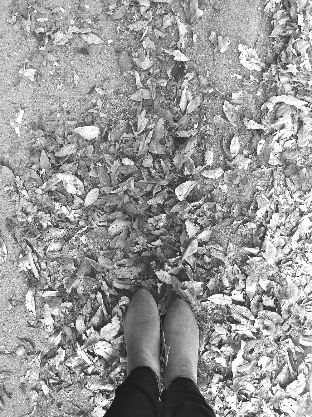 Leaves and booties