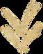 golden arrow_.png