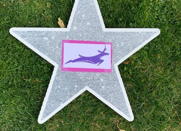 Deer Star Icon