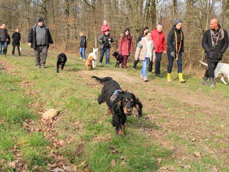 Promenade en groupe autour de l'étang Saint-Hubert - Pourras