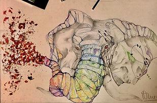 tin q nguyen art vanderbilt artist scientist nashville elephant rainbow