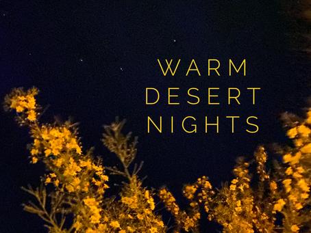 Desert Supreme Playlist- Warm Desert Nights