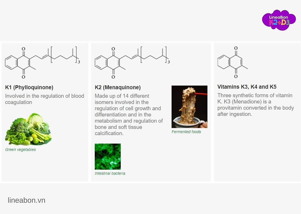 Bố mẹ hiểu đúng vitamin K sẽ nắm được cách giúp con tăng chiều cao tối đa