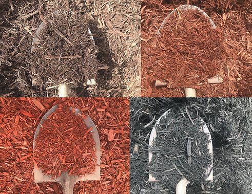 Dyed Mulch collage.jpg