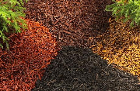 types of mulch.jpg