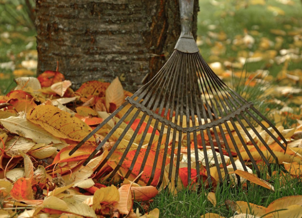 Fall Frenzy: Preparing Your Home for the Cooler Months