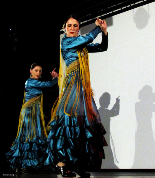 cie y flamenca_Spectacle-flamenco( (8).j
