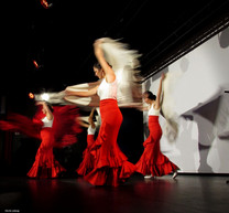 cie y flamenca_Spectacle-flamenco( (16).