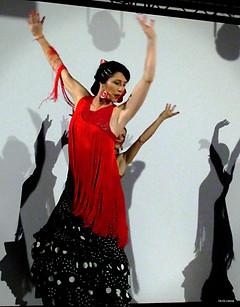 cie y flamenca _Spectacle-flamenco(2).jp