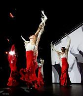 cie y flamenca_Spectacle-flamenco( (14).