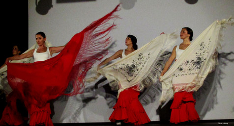 cie y flamenca_Spectacle-flamenco( (12).