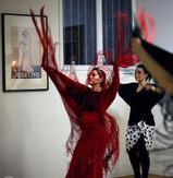 Cie de danse flamenca