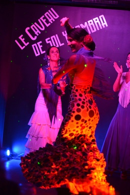 Spectacle_flamenco_Toulouse