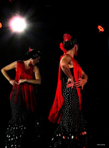 cie y flamenca_Spectacle-flamenco( (7).j