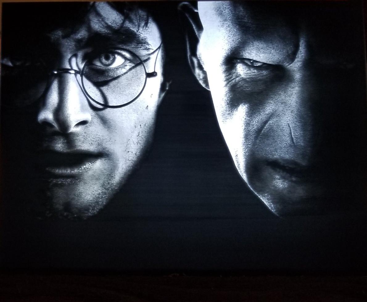 Harry Potter vs Voldemort
