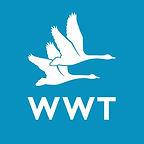 Alec Stevens - WWT.jpg