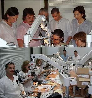 מומחה לטיפולי שורש מיקרוסקופ