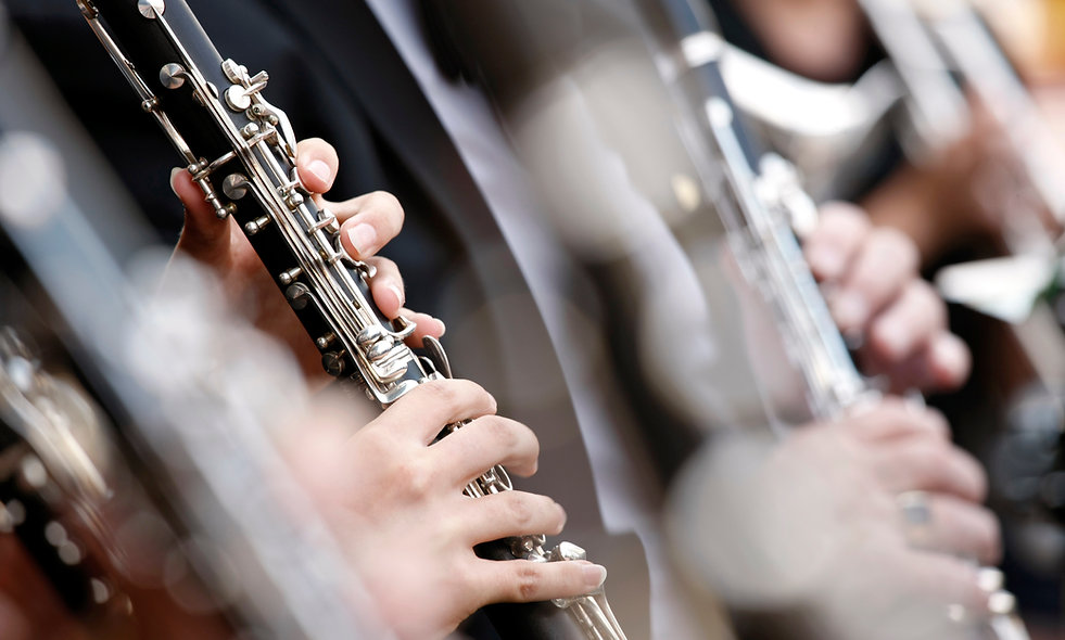 1 Term Clarinet Lessons