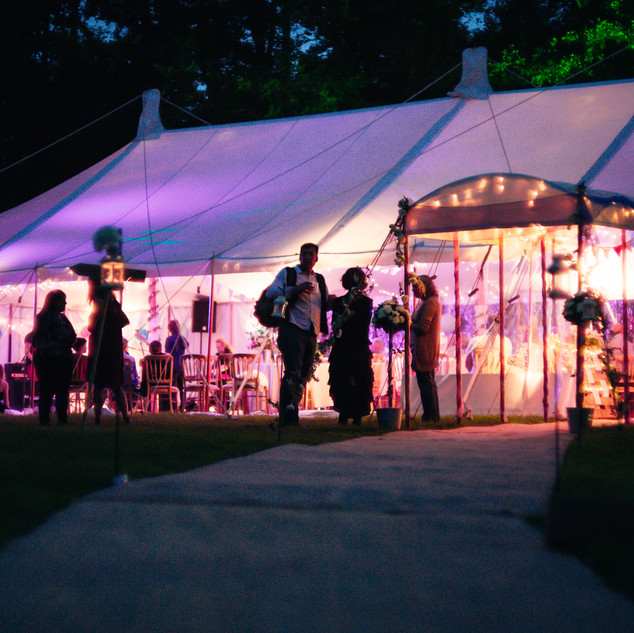 Marque In the Evening 2