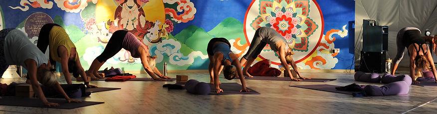 Choices yoga 2018-13.jpg