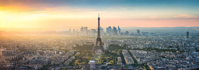 Aerial view of Paris with Eiffel Tower,