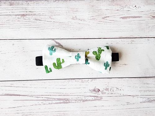 Pajarita cactus