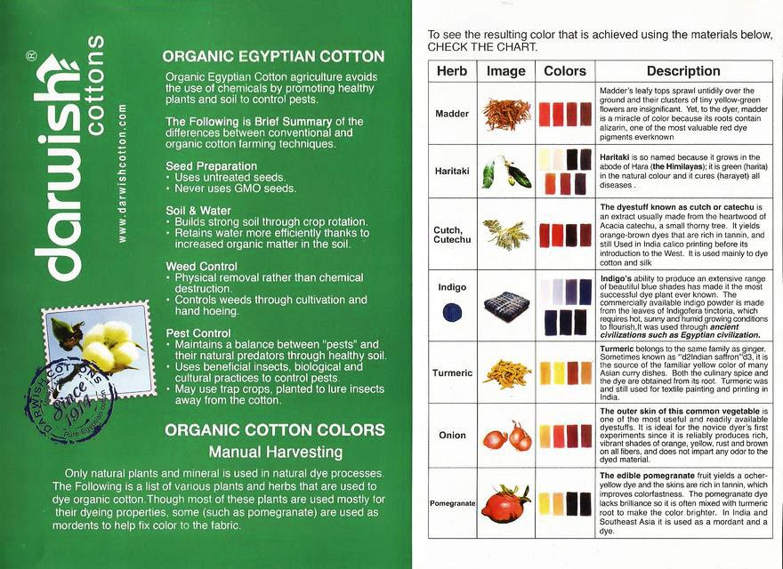 organic Egyptian cotton.jpg