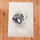Thumbnail: TUMBLEWEED Sirocco the Kakapo Tea Towel