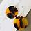 Thumbnail: TWIGG Tortoise Disc Earrings