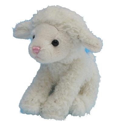Missy the Mini Lamb