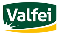 logo-valfei.png