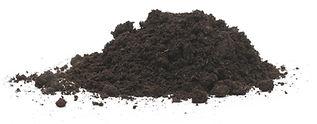 black earth - peat humus